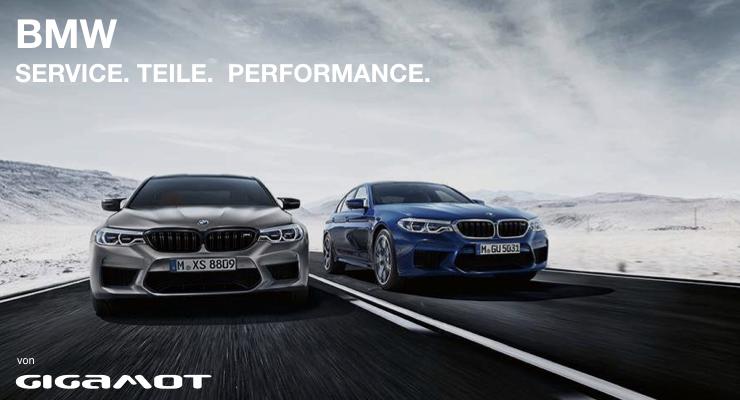 BMW SERVICE M5